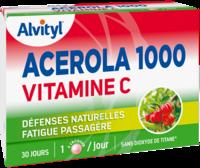 Govital Acerola 1000 à Bourges
