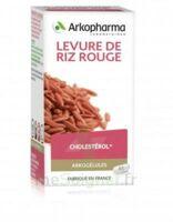 Arkogélules Levure De Riz Rouge Gélules Fl/45 à Bourges