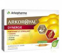 Arkoroyal Dynergie Ginseng Gelée Royale Propolis Solution Buvable 20 Ampoules/10ml à Bourges