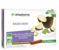 Arkofluide Bio Ultraextract Radis Noir Solution Buvable 20 Ampoules/10ml à Bourges