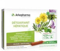 Arkofluide Bio Ultraextract Solution Buvable Détoxifiant Hépatique 20 Ampoules/10ml à Bourges