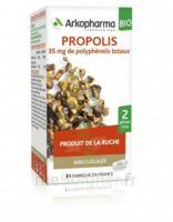 Arkogélules Propolis Bio Gélules Fl/45 à Bourges