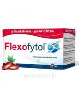 Flexofytol 60 Caps à Bourges
