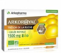 Arkoroyal Gelée Royale Bio 1500 Mg Solution Buvable 20 Ampoules/10ml à Bourges