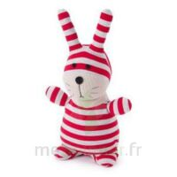 Soframar Bouillotte Peluche Micro-ondable Lapin Socky Dolls à Bourges