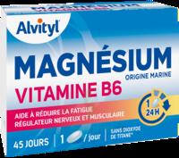 Govital Magnésium Vitamine B6 Comprimés B/45 à Bourges